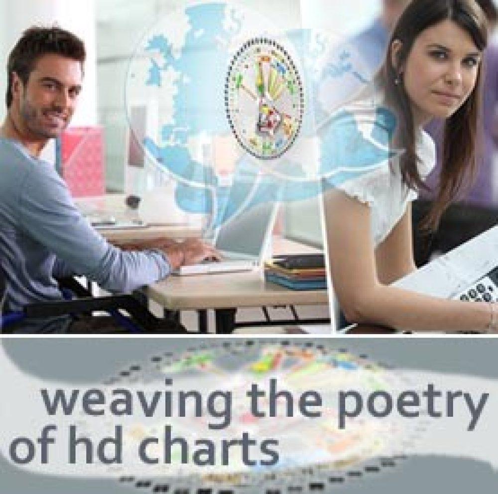 HDS Professional Training Level 1