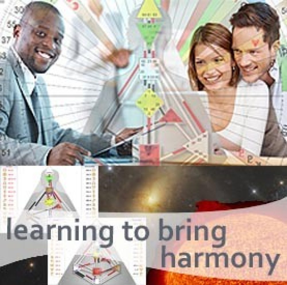 HDS Professional Training Level 2