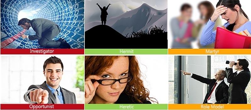 HDS 6 profiles